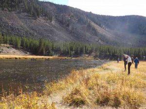 Elk People Standoff